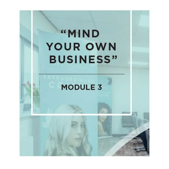 """""""Mind Your Own Business"""" Course - Module 3"""